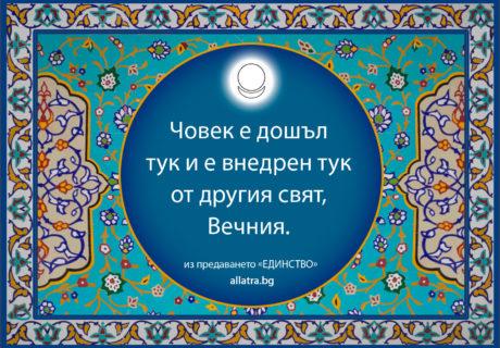 motivator_008_bg