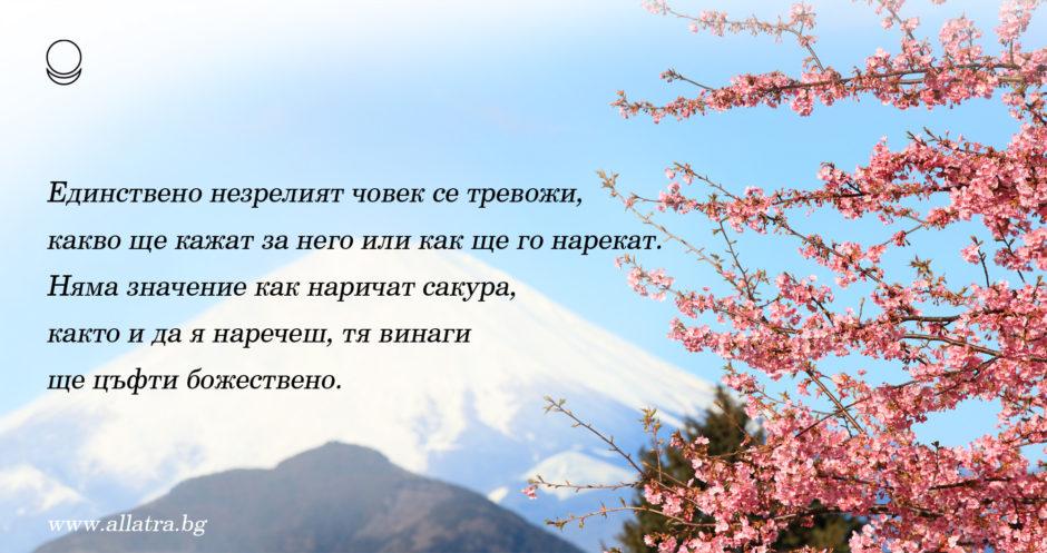 motivator_031_bg