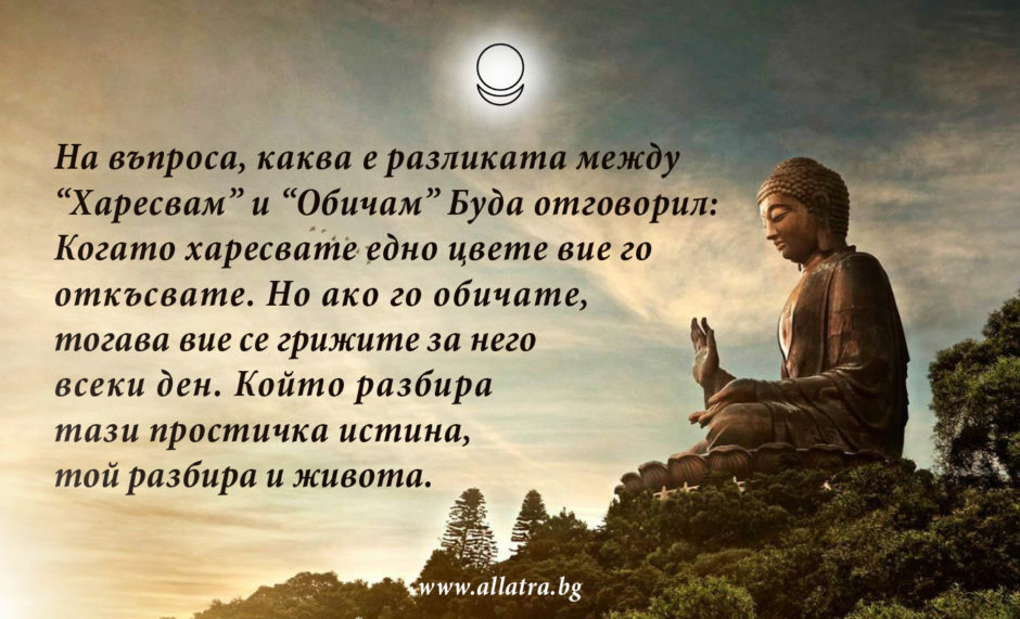 motivator_042_bg