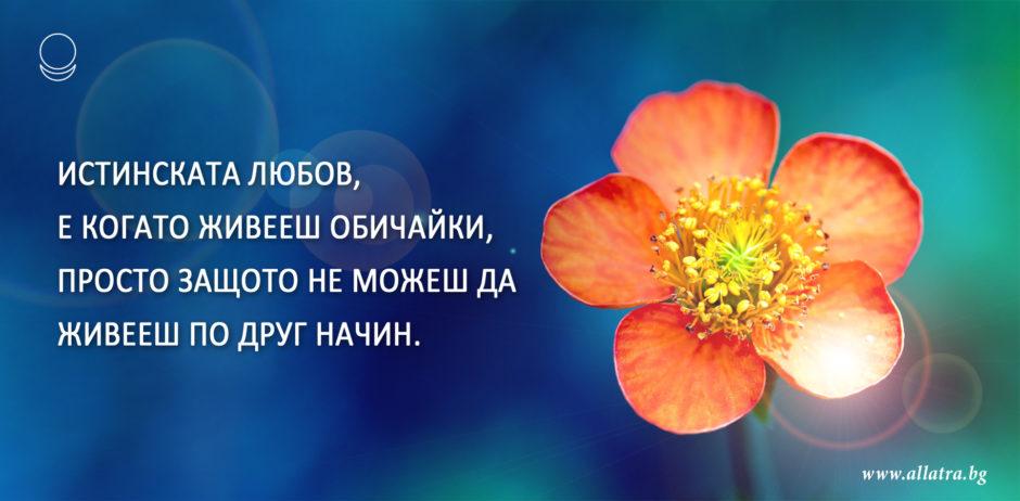motivator_028_bg