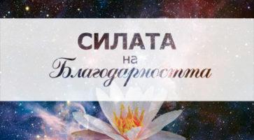 blagodarnost_cover