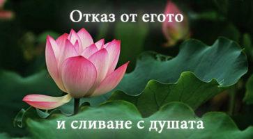 otkaz_ot_egoto_cover
