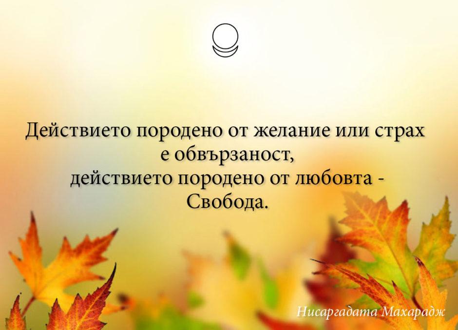 motivator_036_bg