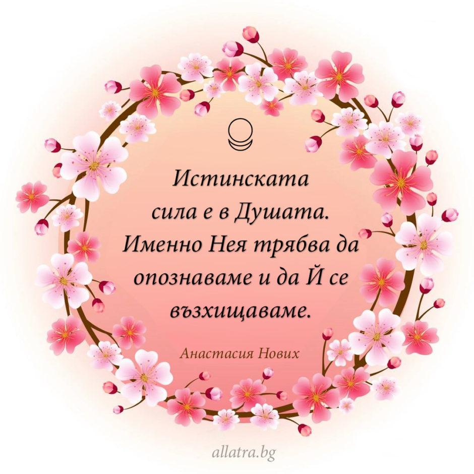 motivator_020_bg