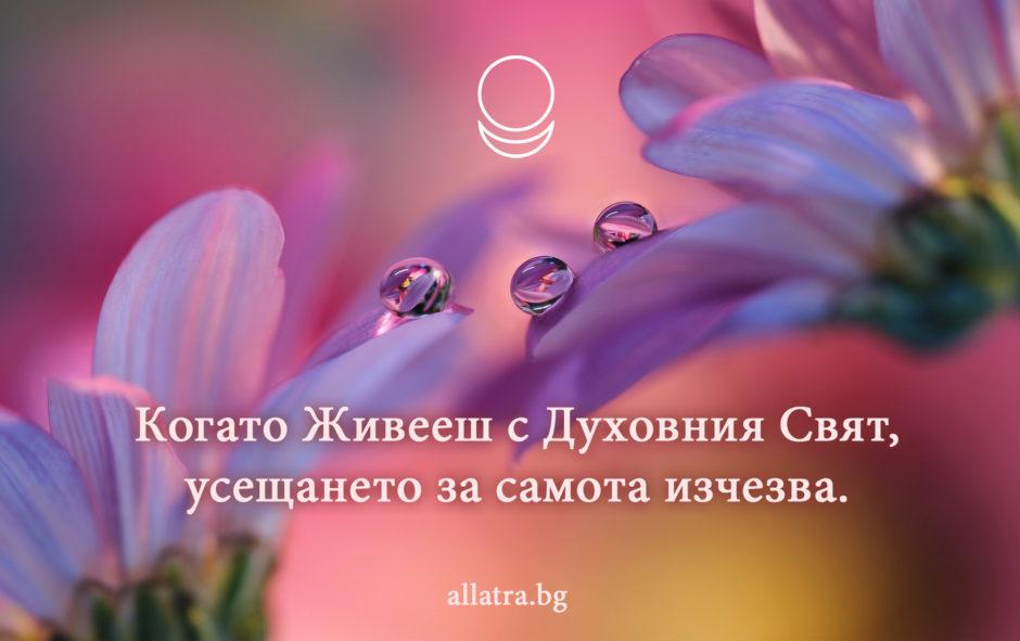 motivator_024_bg