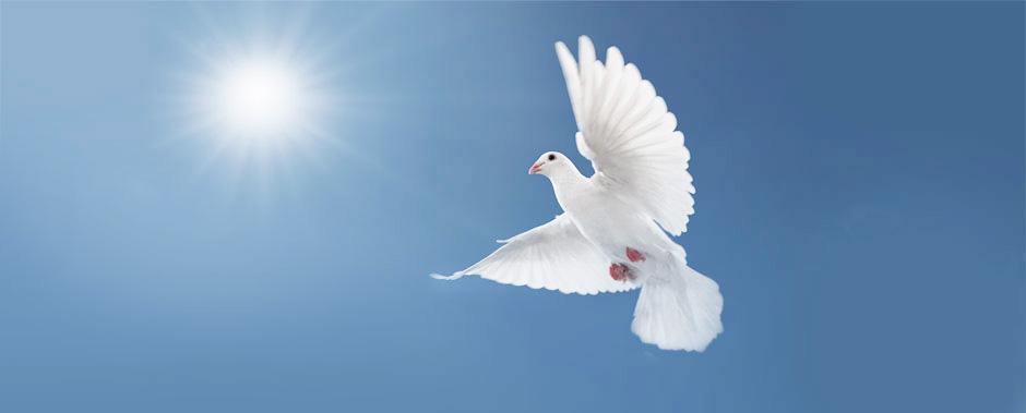 Да бъде мир